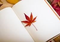 Интересные посты о грамматике японского