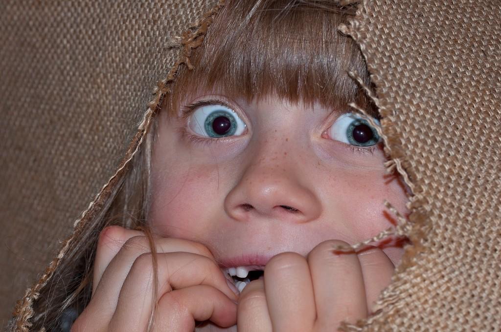 Пост о страшных глаголах おそれる и как их различать
