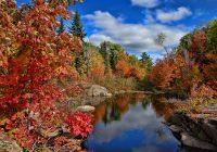 Тематическая подборка слов, связанная с осенью