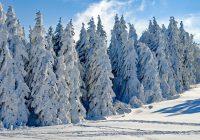 Небольшая коллекция устойчивых выражений о снеге