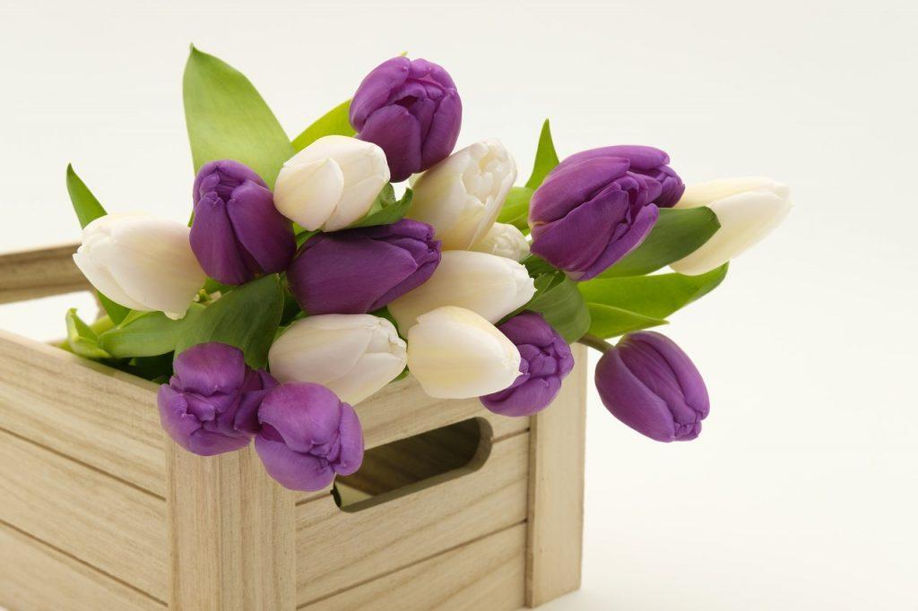 Считаем цветы. Какой счетный суффикс использовать для цветов?