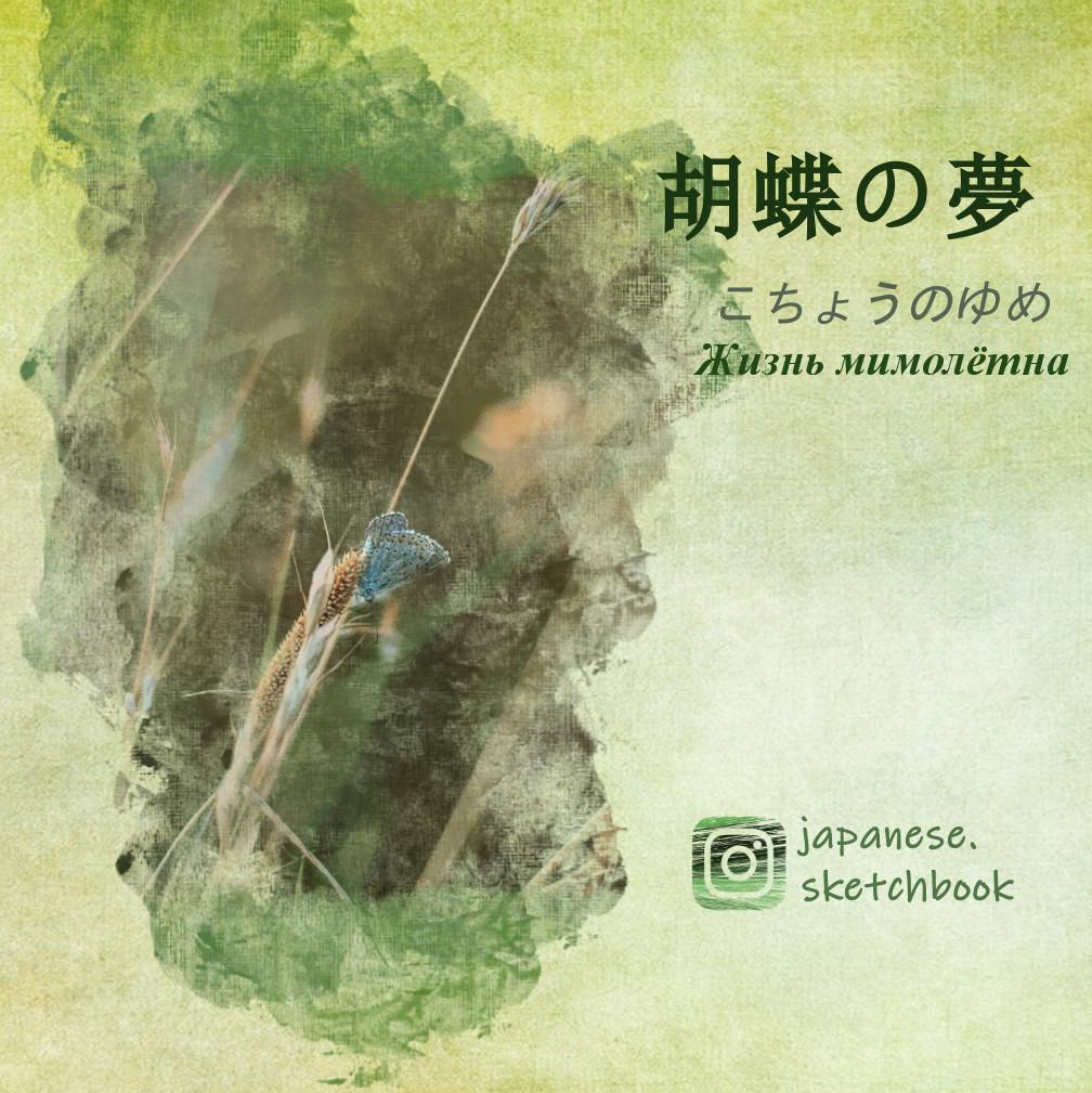 """Японские пословицы и выражения со словом """"Бабочка"""""""